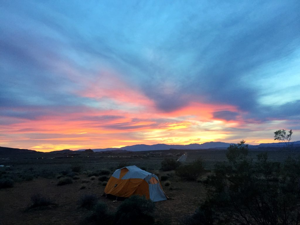 rose mattson - sunset campsite