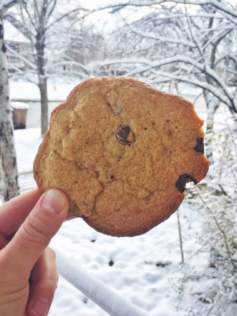 rose mattson - chocolate chip cookie